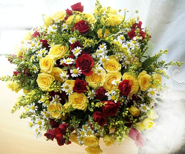 červeno-žluté růže